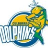 Culburra Dolphins