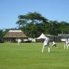 Samoa Gardens Cricket Ovals