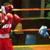 2009VanGam Boxing