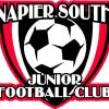 Napier South Football Club
