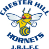 Chester Hill Hornets