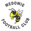 Medowie Soccer Club
