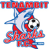 Tenambit Sharks FC