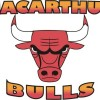 Macarthur Bulls