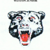 Weston Junior Soccer Club Inc