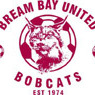 Bream Bay United