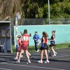 2012, Round 11 Vs. DWWWW - Netball