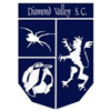 Diamond Valley United SC