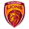 FC Bulleen Lions