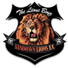 Sandown Lions FC