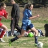 Swan Hill Seniors - Women's 12th August 2012