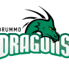 DRUMMO DRAGONS
