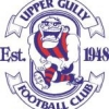 Upper Ferntree Gully Juniors