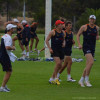 Adelaide Crows Training 28 Jan 2013