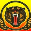 Bay Tigers Football Club