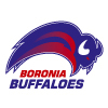 Boronia Buffaloes Basketball Club