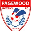 Pagewood Botany FC