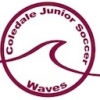 Coledale Waves Junior Soccer Club