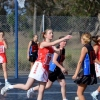2013, Round 4 Vs. DWWWW - Netball