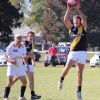 2013 Henty v Osb 27 April