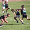 2013 Osb v Holbrook  4 May