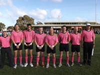 2013 Interleague Umpires